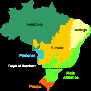 Brazil biomes